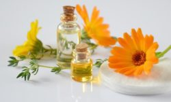 Things You May Not Know About Essential Oils